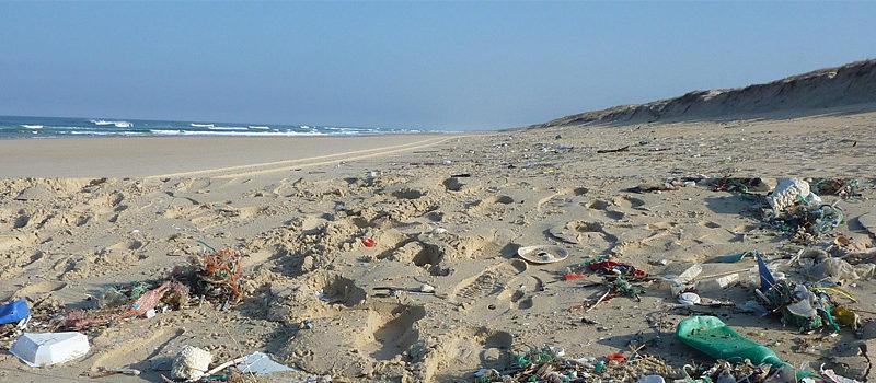 Müllkippe Meer